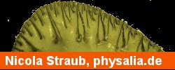 Nicola Straub, physalia.de