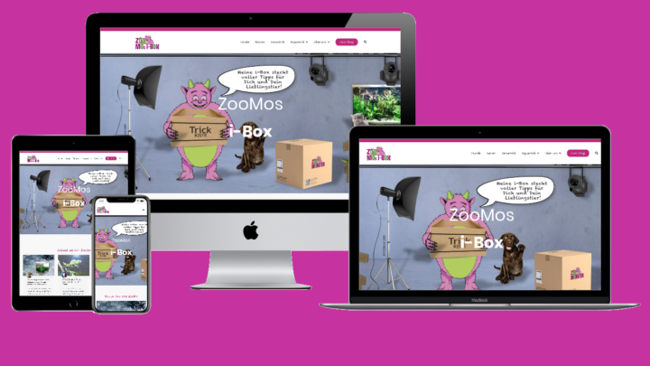 Mockup der i-box-Website